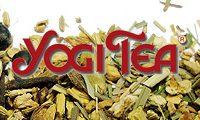 Yogi Tee