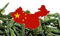 Grüntee China
