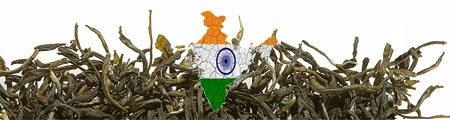 Grüntee Indien Kategorien