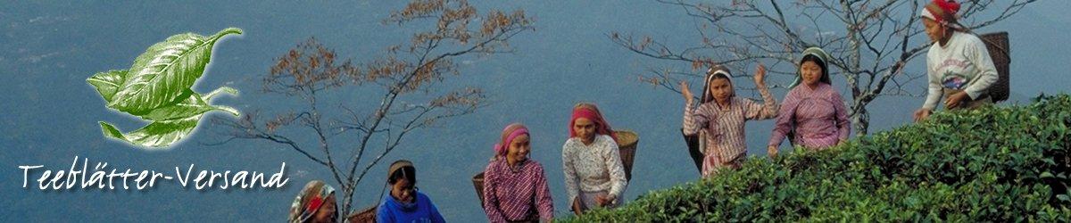 Die weite Welt des Tees - Teeblaetter-Versand