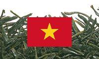 Grüntee Vietnam