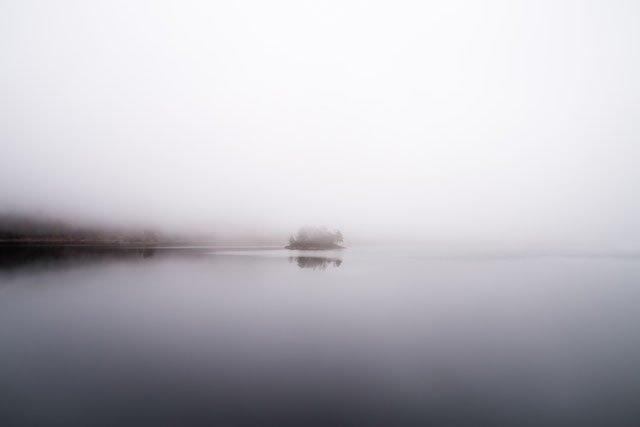 Nebel-Tage-Tee-Tage